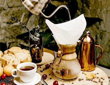 coffee arabica and robusta