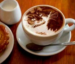 coffee wit milk